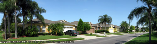 Homes within Sarasota's Wellington Chase neighborhood located on Palmer Ranch.
